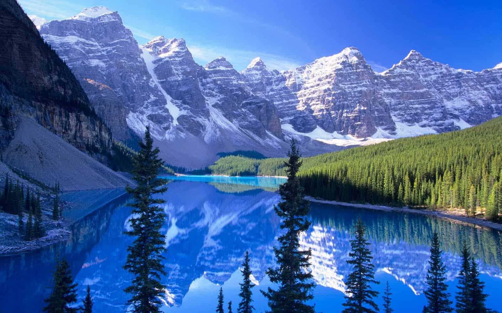 foto bosques-canada